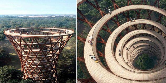 Ny gigantisk turistattraktion - i trä
