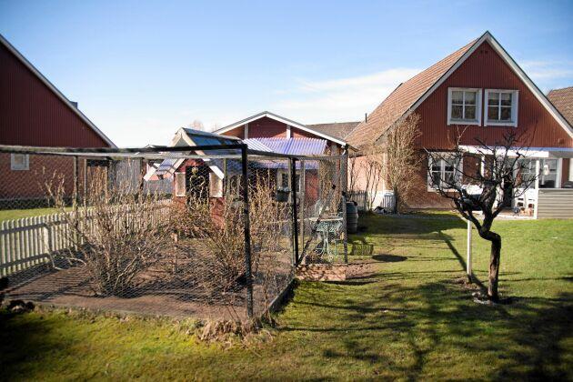 Hönshuset anno 2009 pryder sin plats i trädgården. Foto: Pia Gyllin