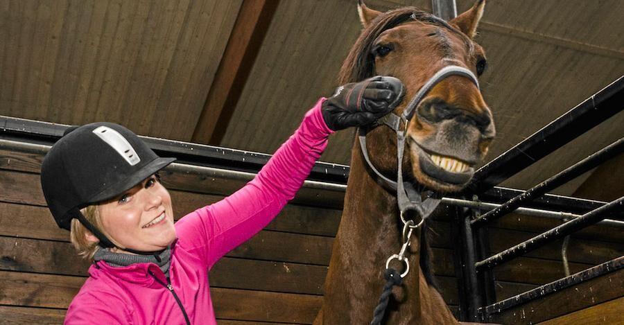 Karolina, hästar