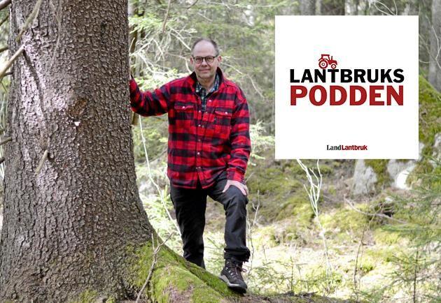 Leif Öster, skogsägare på Stensänget i södra Dalarna.