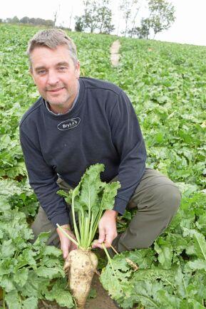 Fredrik Larsson odlar sockerbetor på 125 hektar i Skegrie strax utanför Trelleborg.