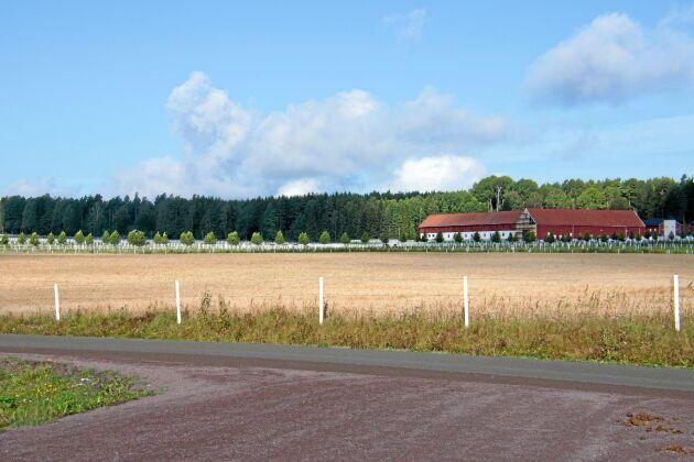 Lökene Gård 200 hektar främst bestående av travbanor och hagar, resterande mark arrenderas ut.