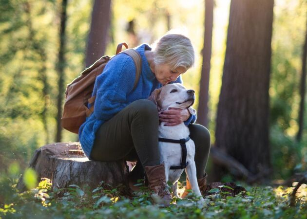 Stubbsittning: 11 hälsoskäl att sitta stilla i naturen