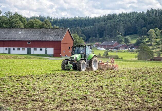Bättre samarbete kan vara nyckeln till ett mer lönsamt lantbruk, enligt forskaren Victoria Törnberg.