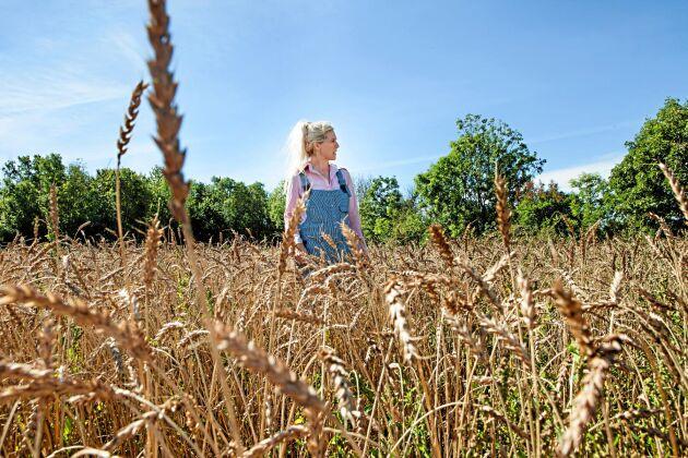 Susanne Eriksdotter är född och uppvuxen på gården och tog över efter sina föräldrar 1997. Sedan några år tillbaka odlar hon den gamla kulturväxten Ölandsvete.