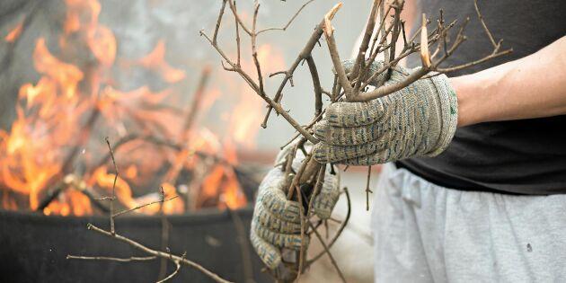 Elda trädgårdsavfall på tomten - reglerna du behöver ha koll på