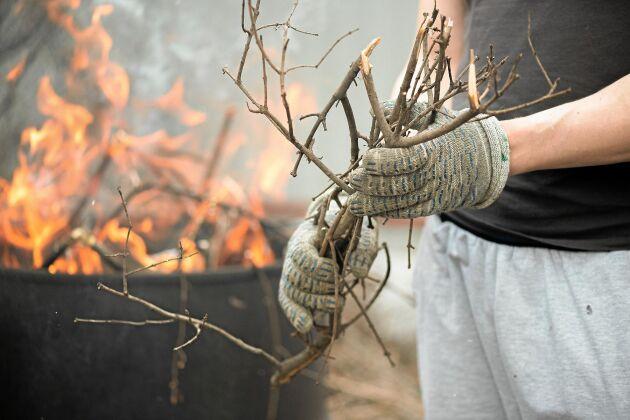 Bara pinnar och ris i tunnan. Allt trädgårdsavfall får du inte elda.