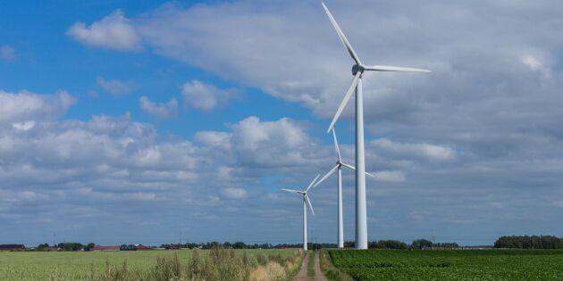 """""""Tio år i ett energipolitiskt dårhus"""""""