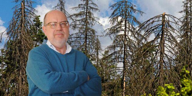 Vädret kan avgöra kampen mot barkborren