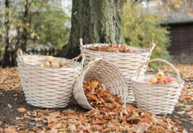 Samla frukt, grönsaker och löv i fina flätade korgar.
