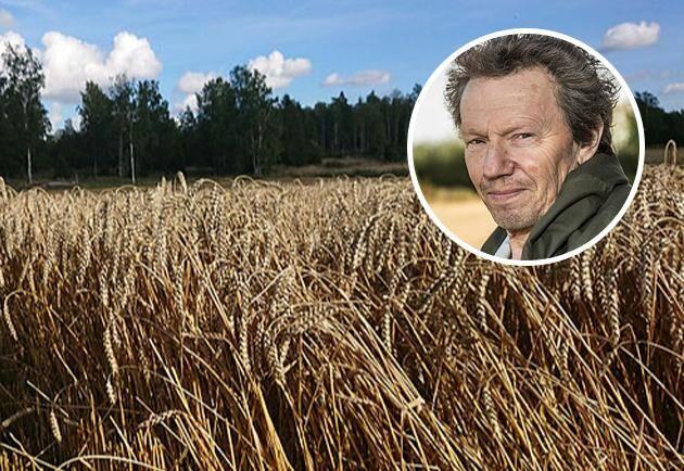 Björn Folkesson, spannmålsexpert och krönikör i Land Lantbruk.