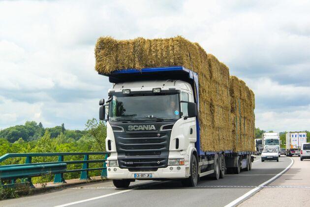 Som importör som ska sälja fodret vidare har man ansvar för att fodret som kommer in i landet är säkert.