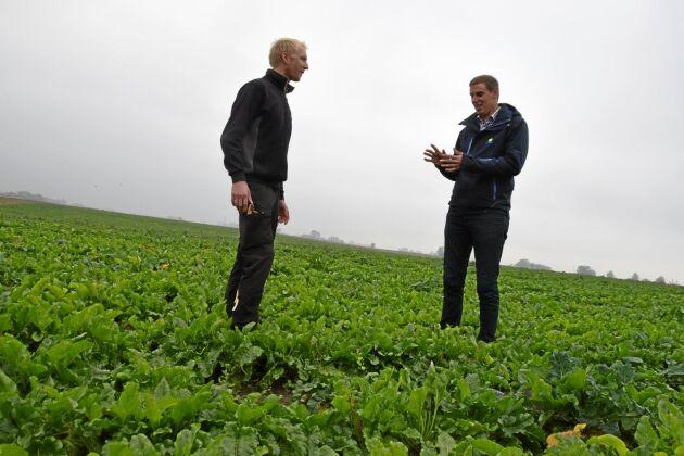 Växtnäringen hamnar på rätt plats på fältet när man använder det nya digitala verktyget för precisionsodling. Henrik Jönsson och David Gottfridsson är nöjda med resultatet.