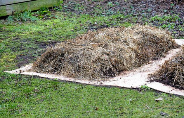 TÄCKET. Ett lager grövre material på hösten hindrar frösått ogräs