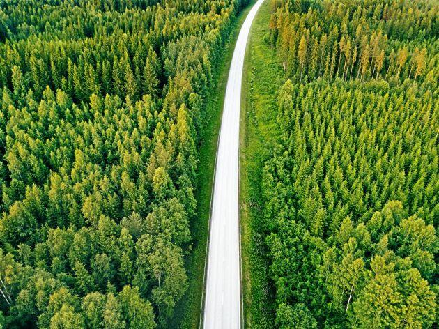 Skogsstyrelsen tänker använda en del av regeringens 2,2 miljoner till karttjänster inför bekämpningen 2020.