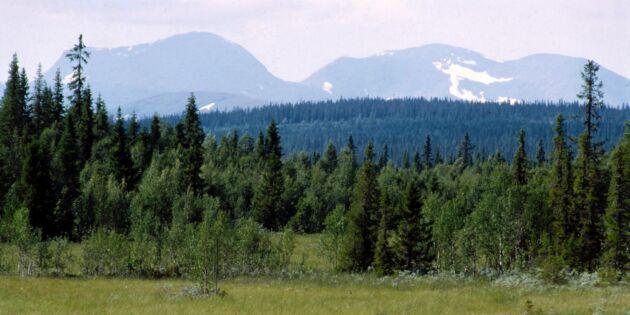 Sluta diskriminera skogsbrukare i fjällnära skog