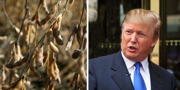 """Trump: """"Handelskonflikten på väg att lösas"""""""