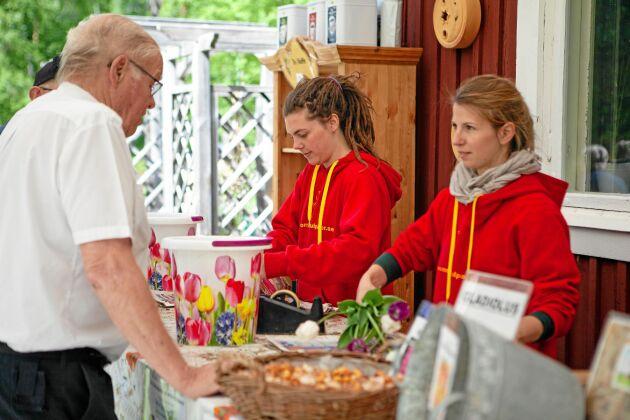 När busslaster av besökare kommer under Tulpanfestivalen, rycker vännerna Farina Logeman och Cindy Kasper, in och hjälper till.