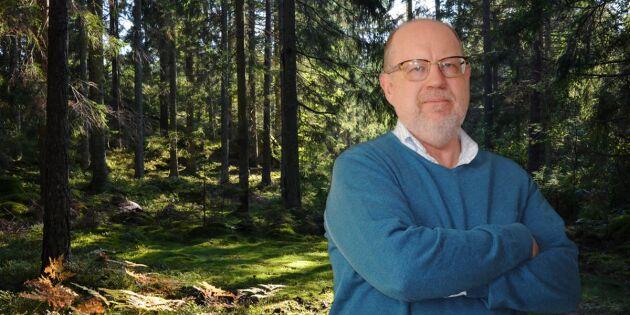 Skogen fortsätter att växa – oavsett vad som händer