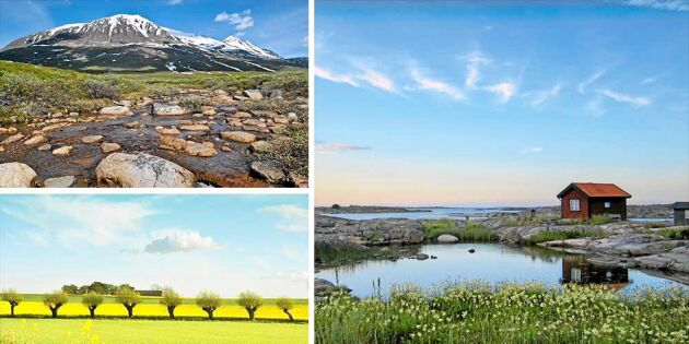 Nu kan du boka Sverige på Airbnb