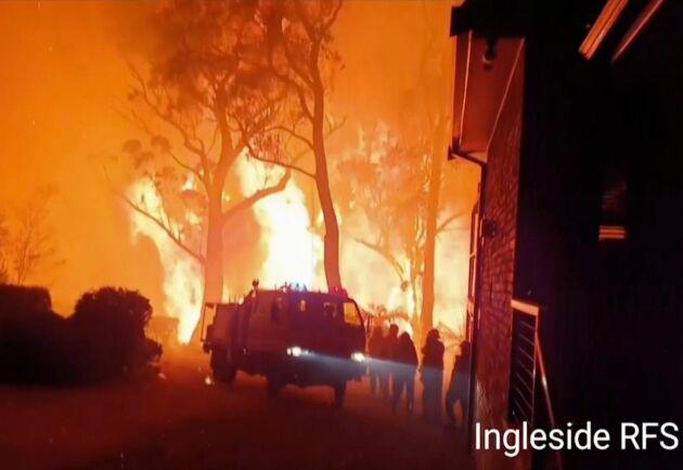 Den lokala brandkårens egna foto av skogsbranden i Blackheath, New South Wales. Myndigheterna varnar för att bränderna i delstaten kan hålla i sig i månader.