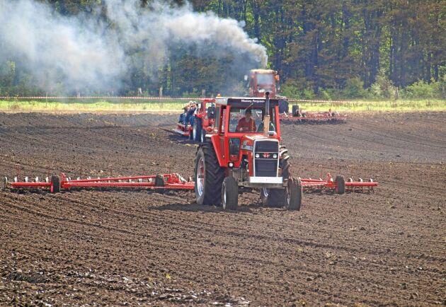 Hela 90 traktorer samlades på MF-markdage i Danmark. Besökare kom även från Sverige och det uppskattades att maskinerna visades i körning.