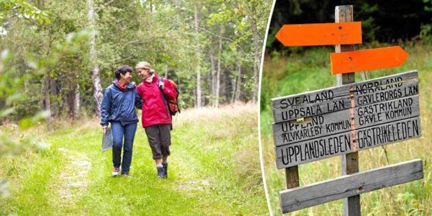 Hitta en vandring nära dig: 10 spännande leder