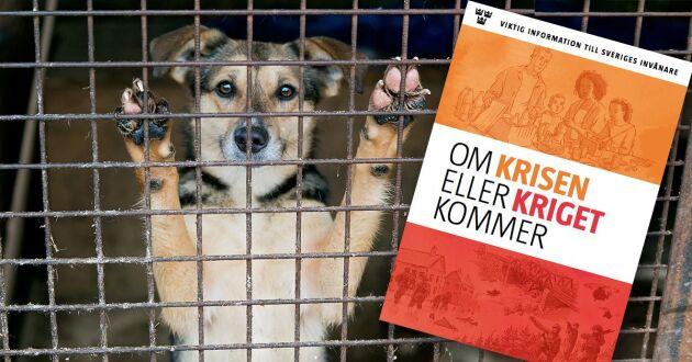 MSB:s krisbroschyr innehåller inte någon information om husdjur, vilket nu får kritik av allmänheten och Djurskyddsföreningen.