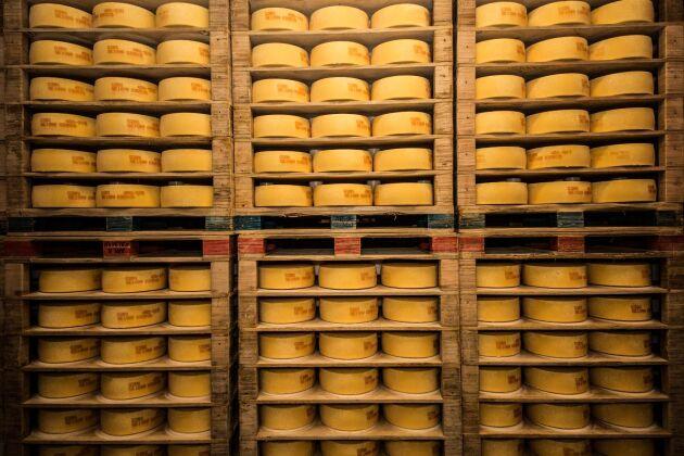 Arla mejeri i Kalmar tillverkar ostar av alla de slag. Mycket ost blir det!