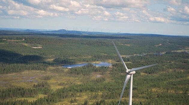 Över 1 000 vindkraftverk skulle byggas här i Markbygden utanför Piteå. I dag är endast 48 stycken färdiga.