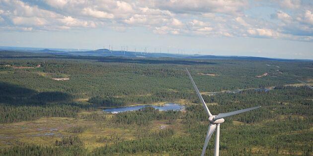 Låga elpriser stoppar enorm vindkraftspark