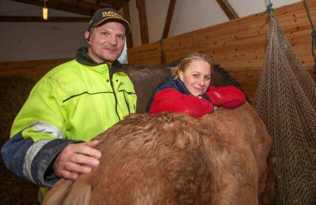 Nybyggare. Det har varit slitigt att bygga en gård från grunden, men snart är Fredrik Furman och Jessica Monasdotter färdiga.