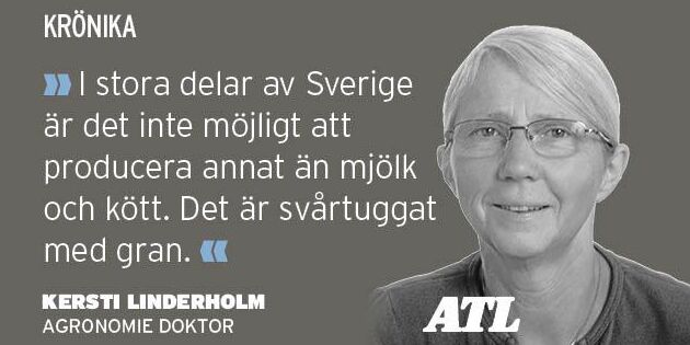 Lyft svensk produktion istället för att kriga