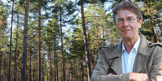 Hur ska folk och skog leva i harmoni?