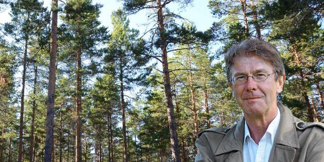 Mångfalden av trädslag måste försvaras