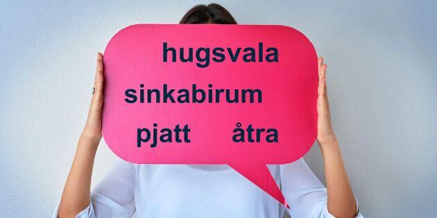 Här är orden som riskerar att försvinna