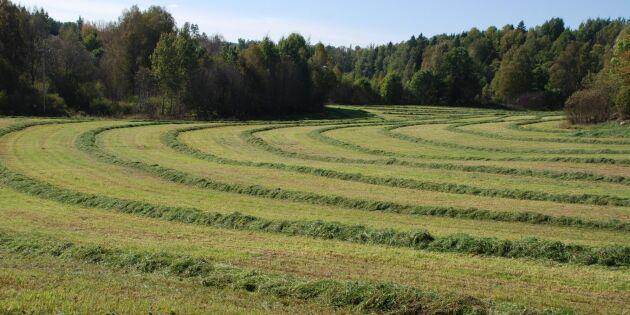 Priset på jordbruksmark fortsätter uppåt