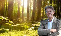 Svårt för politikerna att sätta ned foten om skogsutredningen