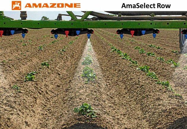 SILVER: Amazone Amaselect. Att radhacka mellan plantorna i raden är svårt. AmaSelect Row sprutar bara raderna. Avståndet mellan munstyckshållarna är 25 centimeter, var och en har fyra munstycken med 40 graders toppvinkel. RTK-kartan från sättningen visar vilka munstycken som täcker raden och ska arbeta. Tekniken klarar såväl 75 och 50 cm radavstånd bredsprutning.