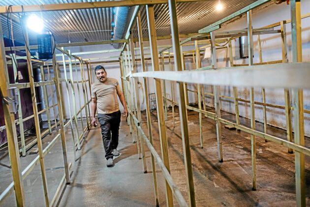 Almahdi Almohamed odlar svamp i påsar vid Grönt Centrum vid Lövsta på Gotland. Lokalen som han hyr har han rustat för att passa svampodling.