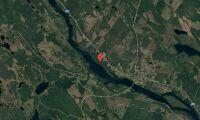 Ny ägare till skogsfastighet i Västerbotten i augusti