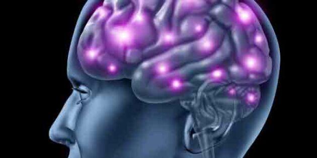 Glömsk? Här är snabba hjärngympan som faktiskt funkar