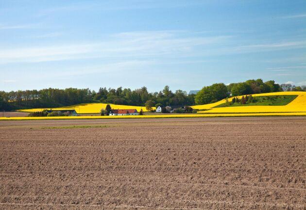 Andelen unga jordbrukare minskar i Sverige. Men i en studie utförd av Agrifood economics centre undersöker två forskare startstödets effekter.