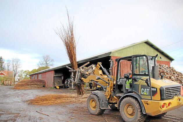 I dag är det en miniindustri på gården som sysselsätter 5-10 personer, beroende på säsong.