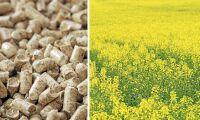 Nytt EU-förslag om biodrivmedel får kritik