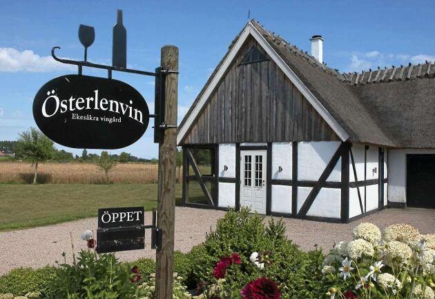 """Österlenvin är en av få svenska vingårdar och ligger i """"Sveriges Provence"""", på Österlen."""