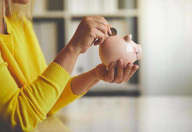 Hur blir det nya året privatekonomiskt? Här är några hållpunkter.