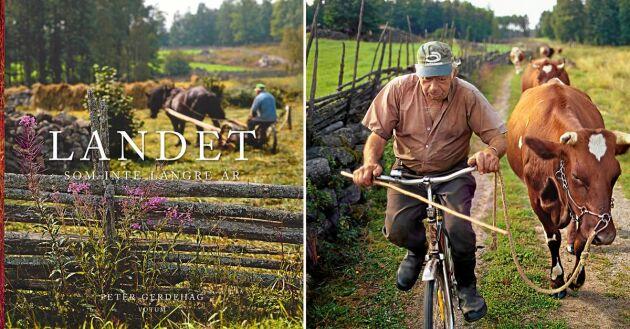 Peter Gerdehag har följt livet på gården Kroxhult 1:4 med sin kamera i 35 år.