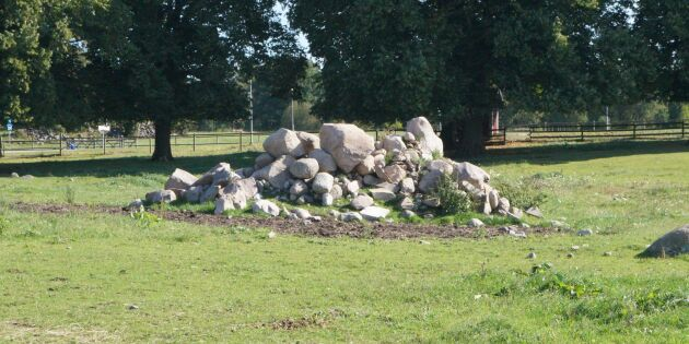 Skyddade stenhögar blir riksdagsfråga