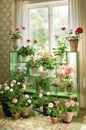 En blomstertrappa i samma stil som på Karin Larssons Sundborn ger ljus och plats åt många växter.